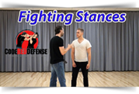Fighting Stances