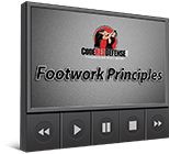 Footwork Principles