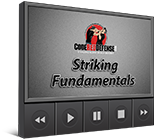 Striking Fundamentals